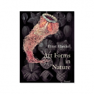 Livre  Art forms in nature